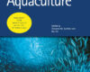 New study provides practical solutions to improve lumpfish welfare